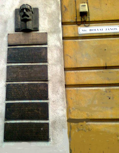 Temesvár - Commemorating János Bolyai in five languages