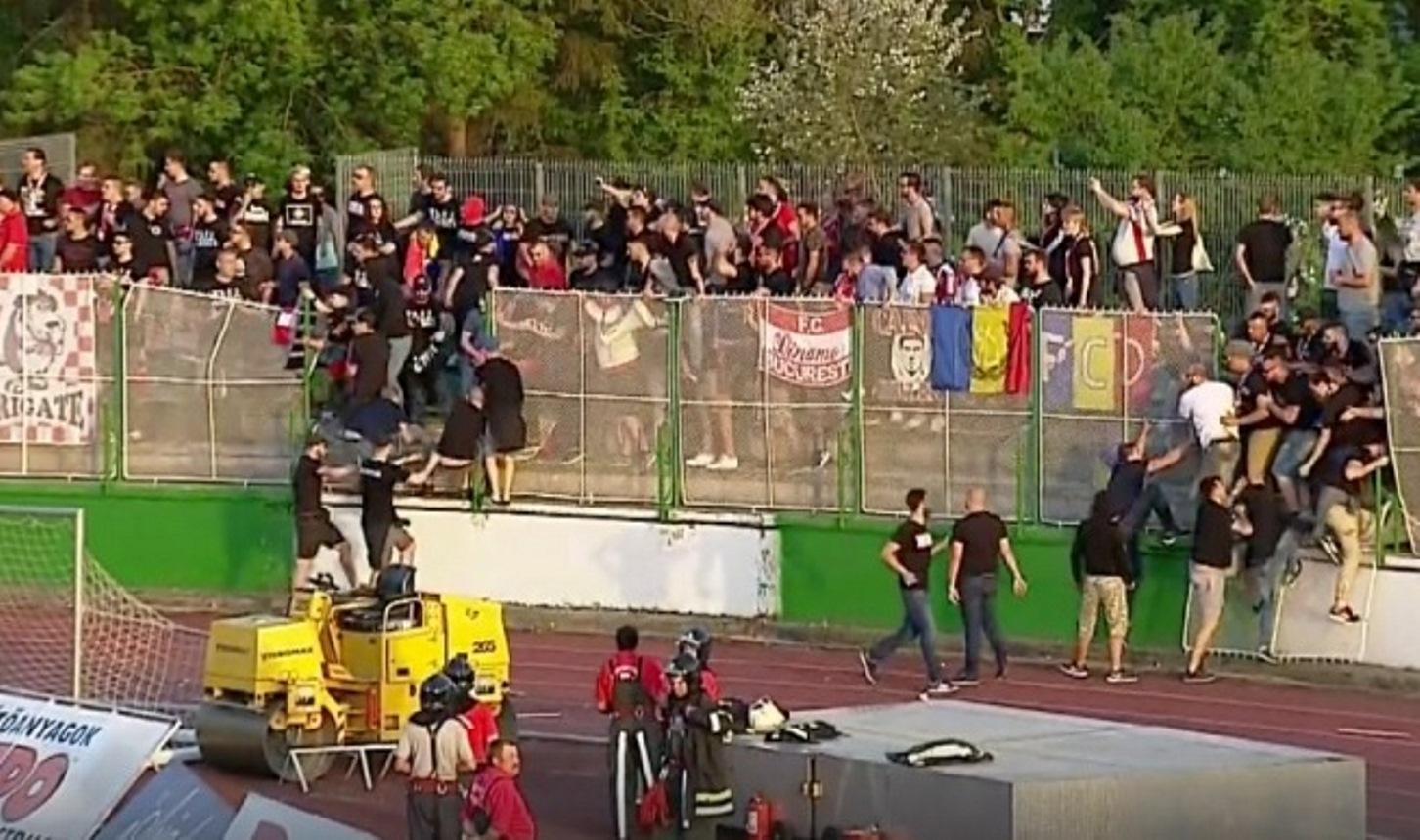 Dinamo Fans