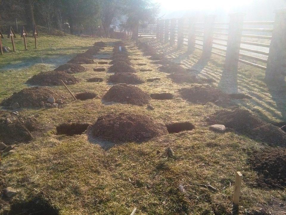 Grave Preparations