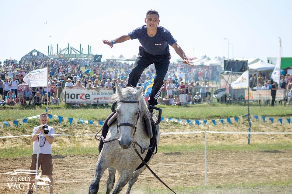 Shagya Horse Club