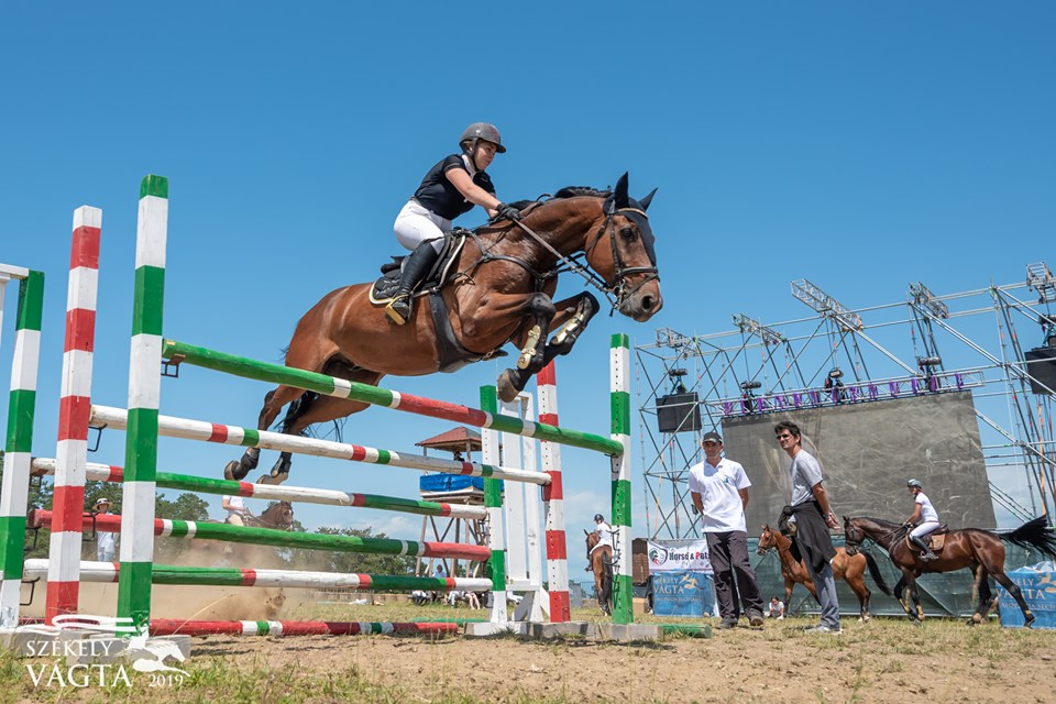Show Jumping Cup