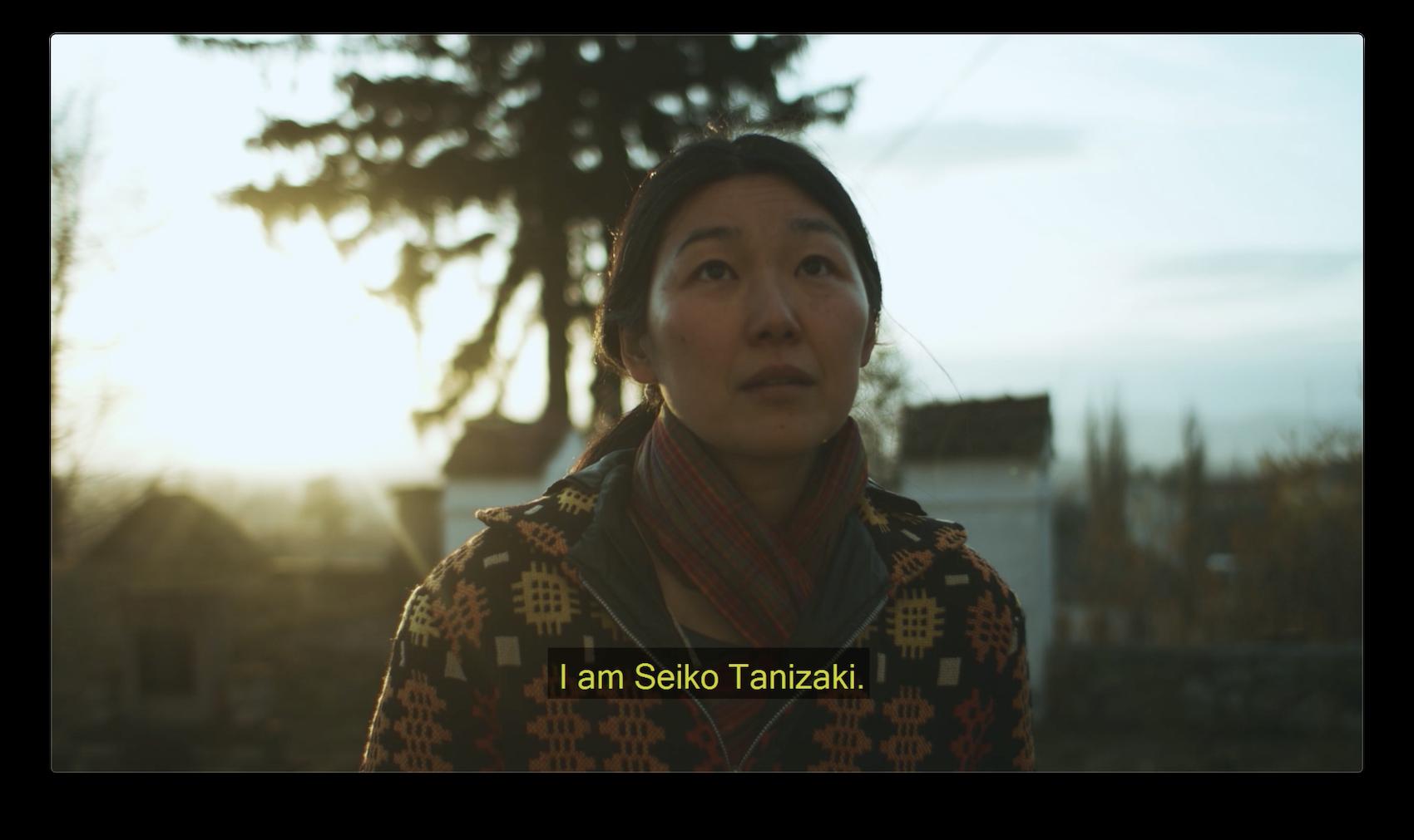 Faces of Transylvania: Seiko Tanizaki